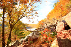 5 Great Hiking Trails Near Devils Lake State Park