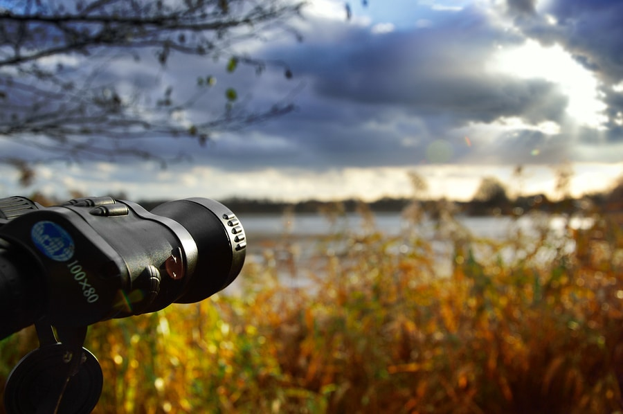 Birdwatching This Fall Near Devils Lake State Park in Baraboo, Wisconsin